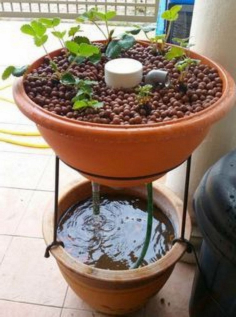 50+ Marvelous Small Indoor Aquarium Ideas To Make Your House More